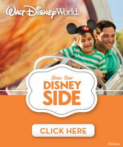CS-13-28105-Disney-Parks-Brand-Campaign-Web-Banners-WDW-250x300